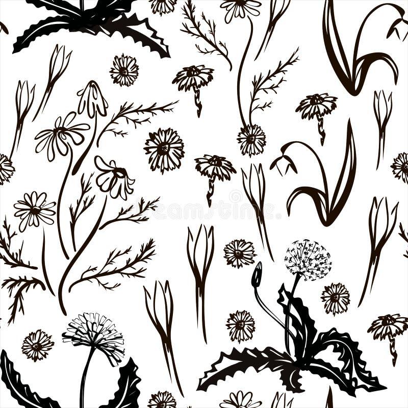 r Άνοιξη καθορισμένη συρμένη στη μαύρη γραμμή Τα πρώτα λουλούδια άνοιξη Εικόνα για το ντεκόρ και το σχέδιό σας διανυσματική απεικόνιση
