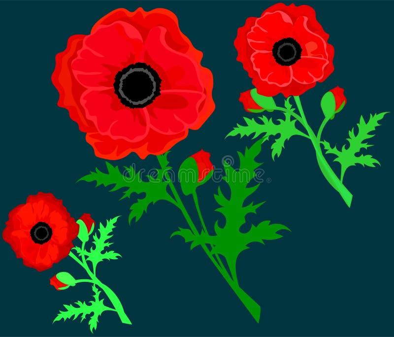 在白色背景隔绝的红色鸦片 传染媒介红色浪漫鸦片花和草 红色鸦片 与鸦片的卡片 ?? 库存例证
