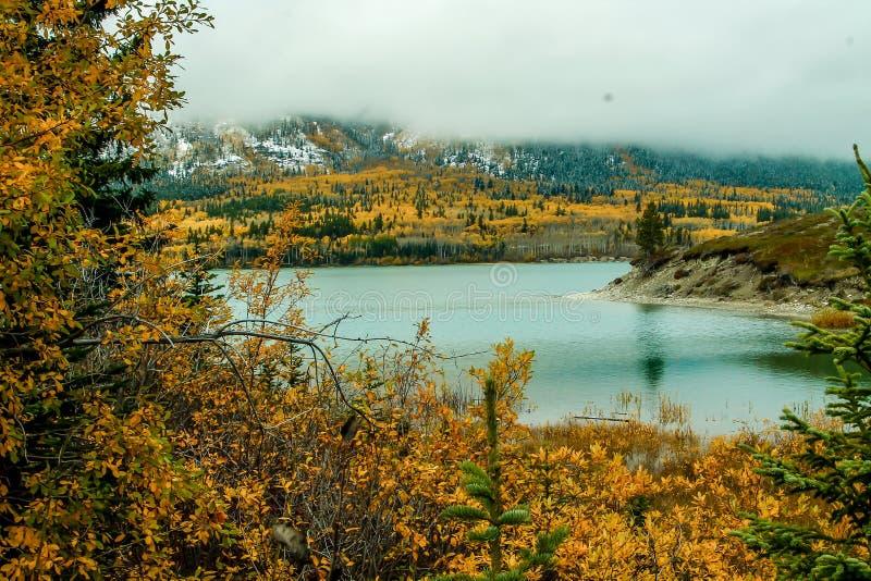 Cores adiantadas da neve e da queda, área de recreação provincial do lago Sibbald, Alberta, Canadá imagens de stock royalty free