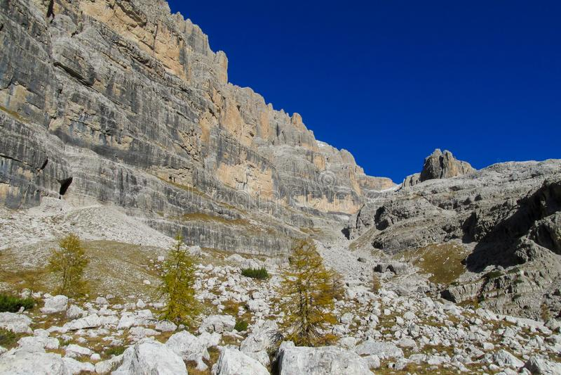 Cores amarelas bonitas do outono nas montanhas Dolomiti di Brenta, Itália imagens de stock