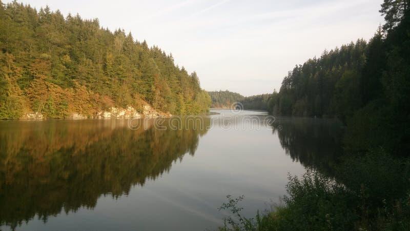 Cores bonitas das árvores no outono pelo rio Vltava na república checa fotos de stock royalty free