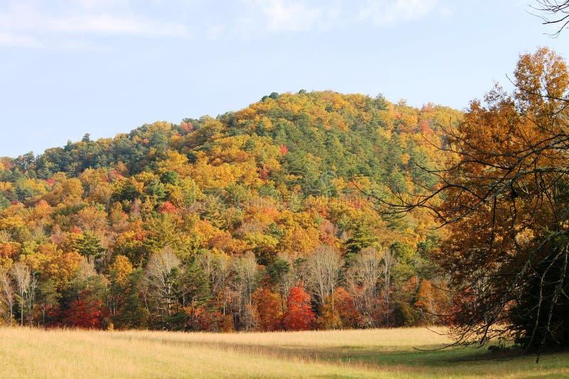 Cores corajosas da queda mostradas no campo e nas montanhas imagens de stock royalty free