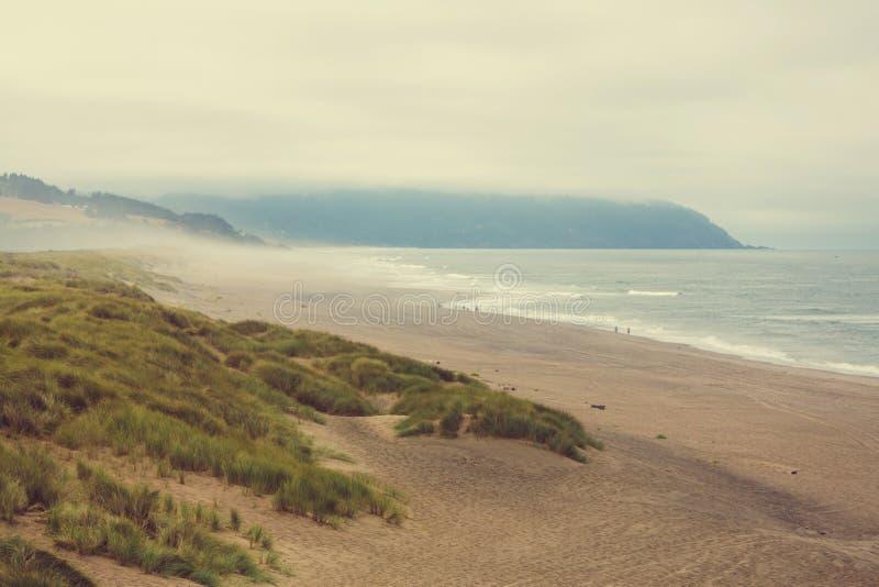 Cores da costa de Oregon foto de stock