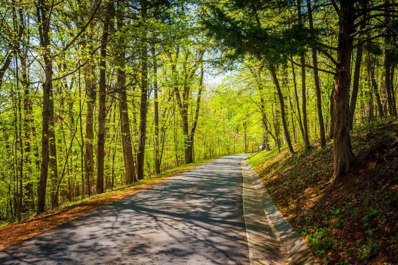 Cores da mola ao longo de uma estrada no Shenandoah Valley rural de Vir imagem de stock