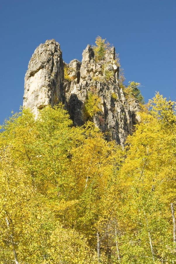 Cores da queda no Black Hills imagens de stock royalty free