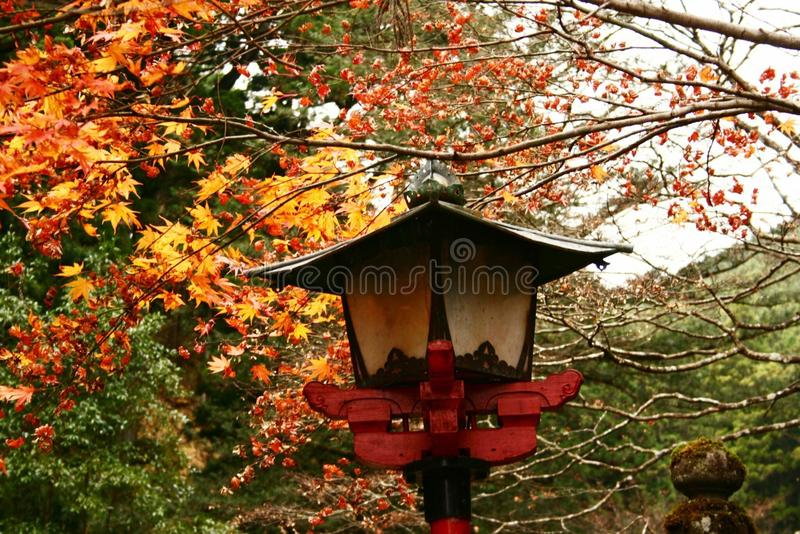 Cores da queda perto de Nikko fotos de stock