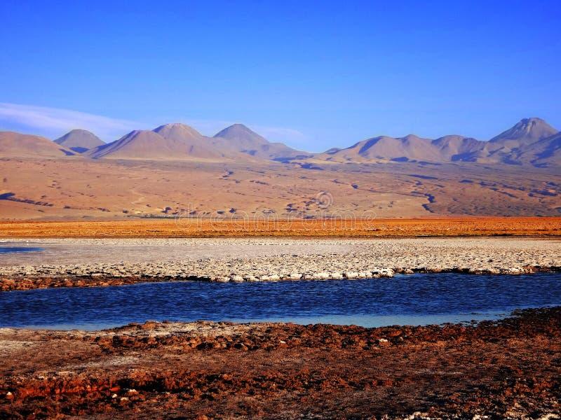 Cores de Atacama foto de stock royalty free
