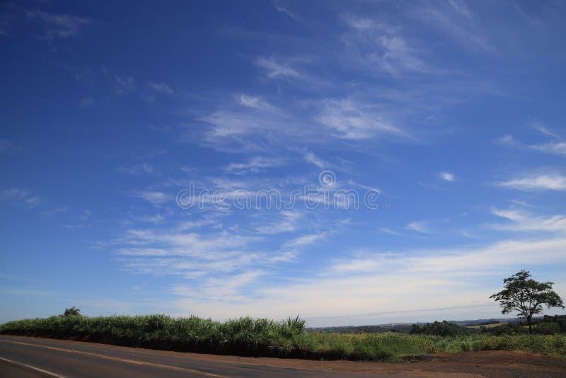 Cores de Brasil, cinzento, verde e de um azul bonito e de um branco no céu fotos de stock