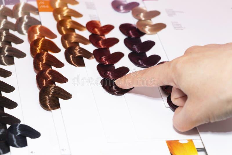 Cores do cabelo da amostra, m?scaras diferentes do diret?rio do cabelo de cores do cabelo imagens de stock