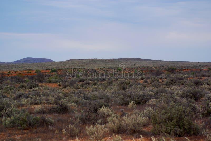 Cores do deserto fotos de stock