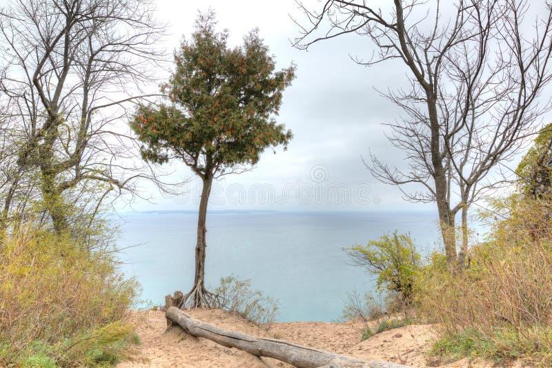 Cores do outono, Michigan, nacional de sono do urso Lakeshore fotografia de stock royalty free
