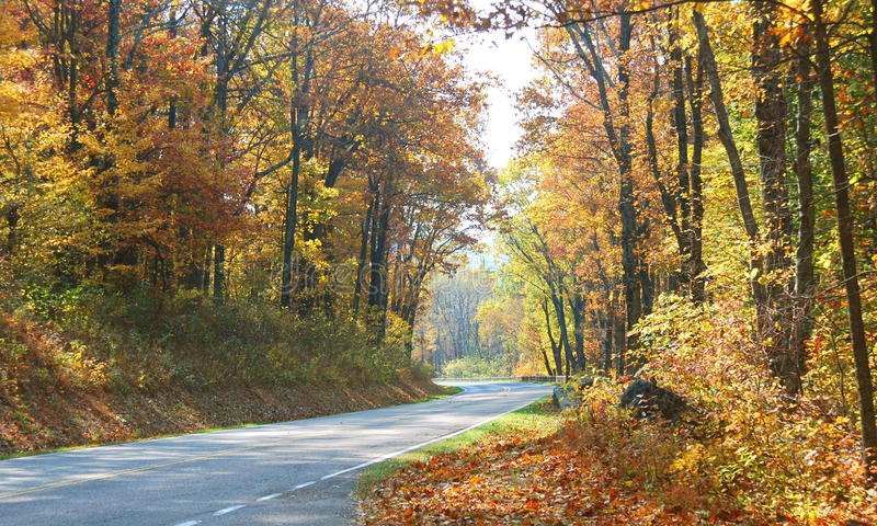 Cores do outono, movimentação da skyline fotos de stock