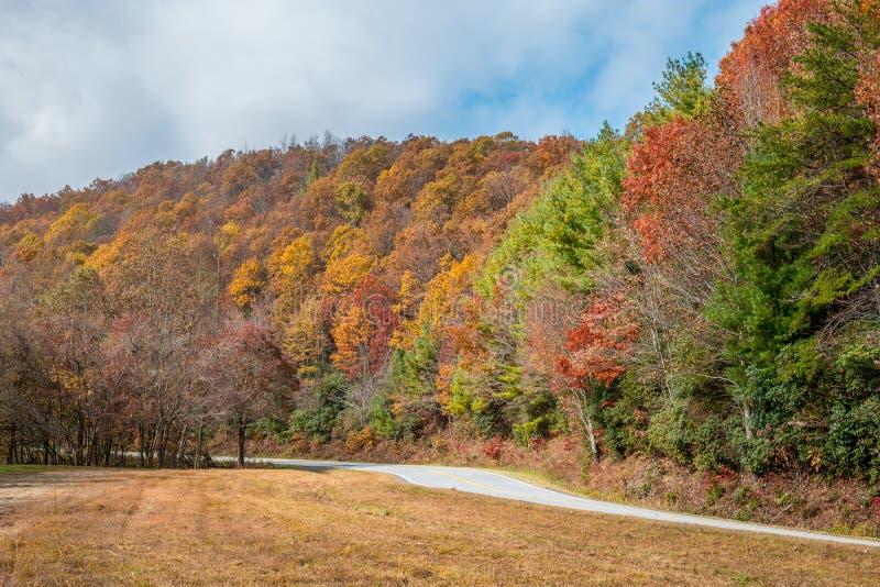 Cores do outono nas montanhas imagem de stock royalty free