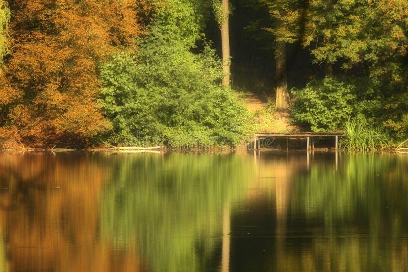 Cores do outono no lago fotografia de stock royalty free