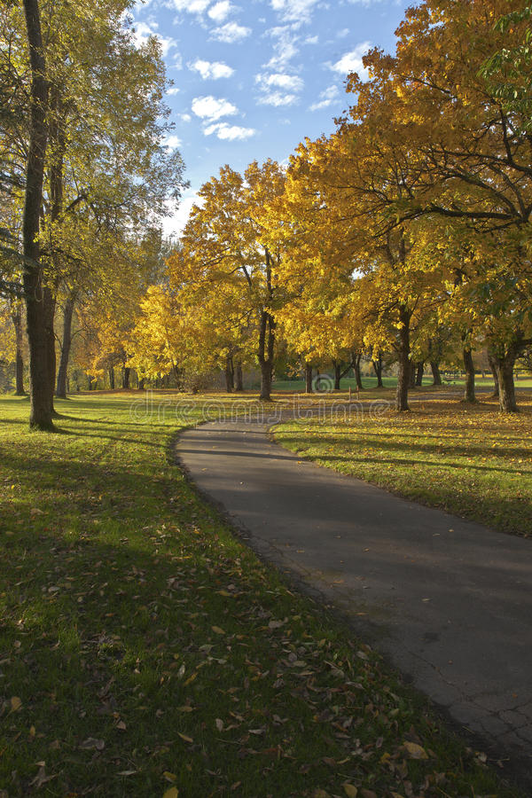Cores do outono no parque azul Oregon do lago imagens de stock