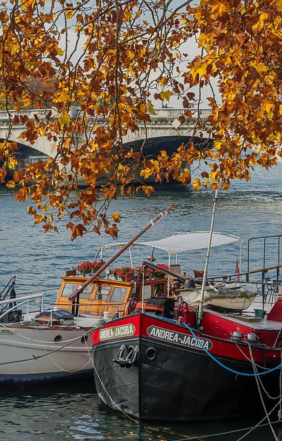 Cores do outono nos bancos de Paris foto de stock
