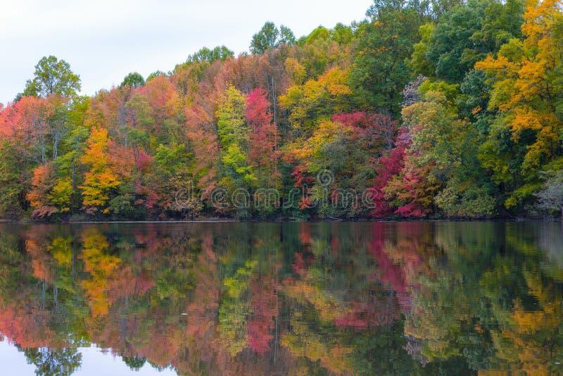 Cores do outono que refletem na lagoa da foto de stock royalty free