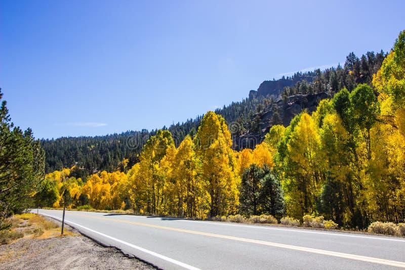 Cores em mudança das árvores na queda ao longo da estrada da montanha fotografia de stock royalty free