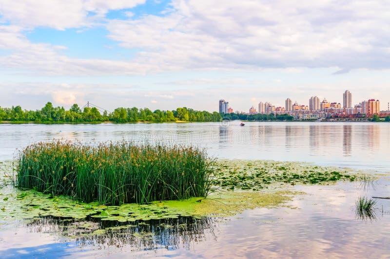 Download Fim Da Tarde No Rio De Dnieper Em Kiev Imagem de Stock - Imagem de amarelo, tranquil: 29842875