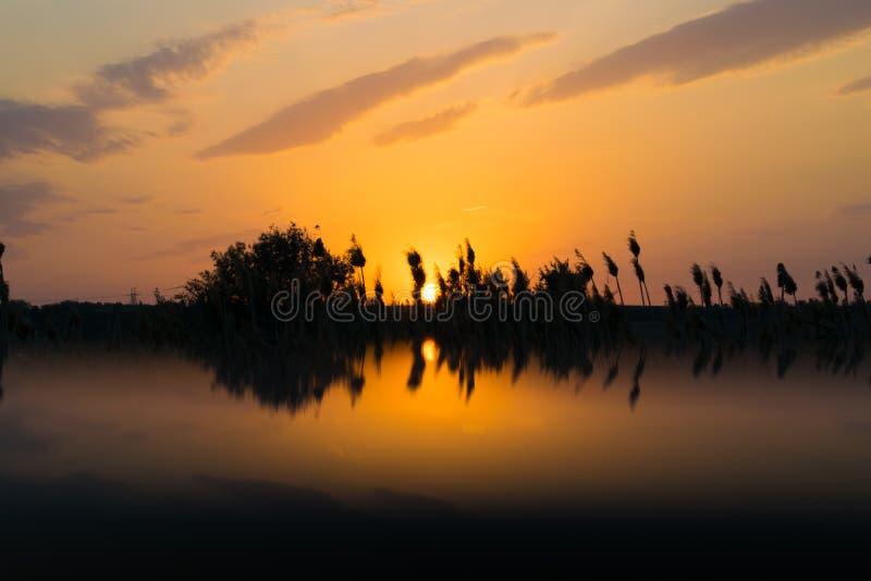 Cores quentes e mornas e máscaras de paisagens bonitas de Rússia na região de Rostov Campos locais de girassóis amarelos de flore imagens de stock royalty free