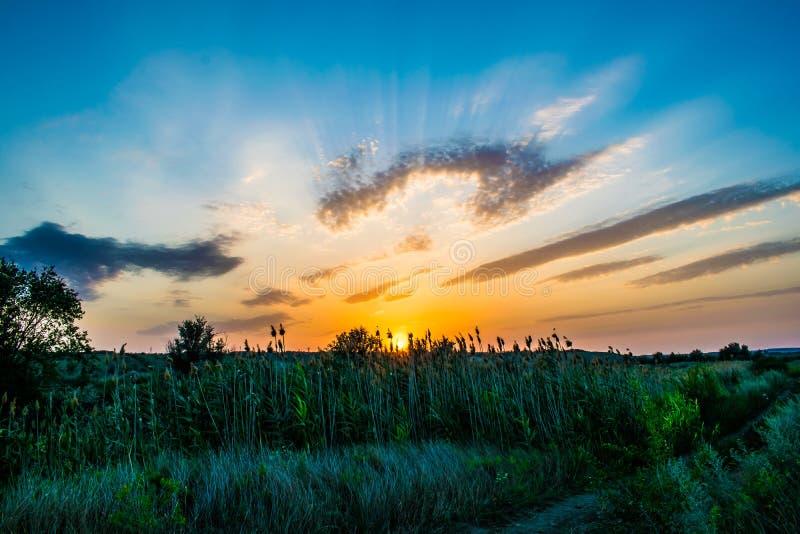 Cores quentes e mornas e máscaras de paisagens bonitas de Rússia na região de Rostov Campos locais de girassóis amarelos de flore fotografia de stock