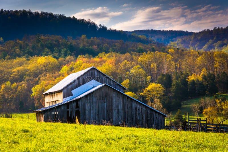 Cores velhas do celeiro e da mola no Shenandoah Valley, Virgínia imagem de stock royalty free