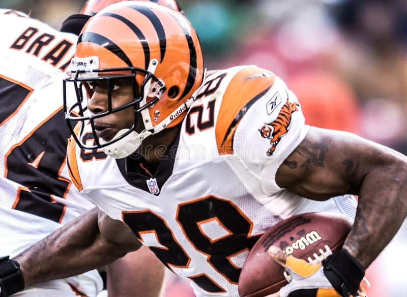 Corey Dillon, Cincinnati Bengals foto de archivo