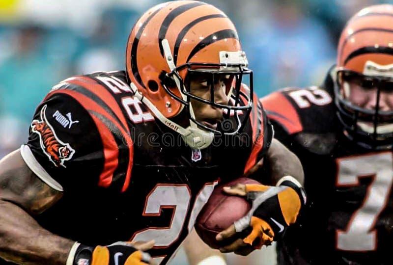 Corey Dillon, RB de los Cincinnati Bengals fotos de archivo libres de regalías