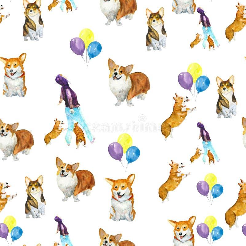 Corgi dog pattern stock image