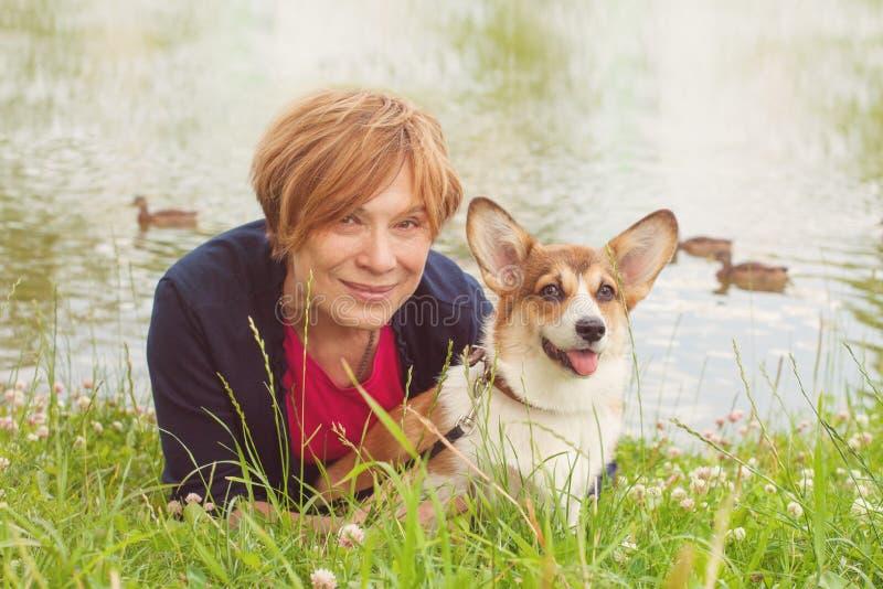 Corgi psi obsiadanie z starszą kobietą w trawie zdjęcia royalty free