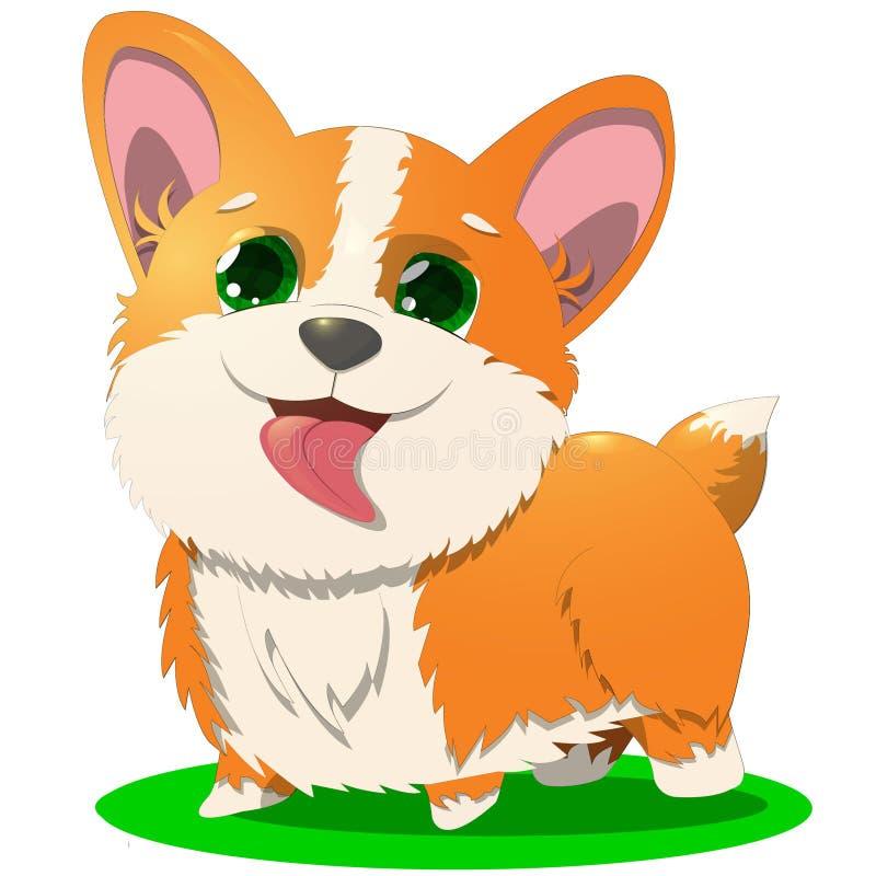 Corgi sveglio arancio del cucciolo immagine stock libera da diritti
