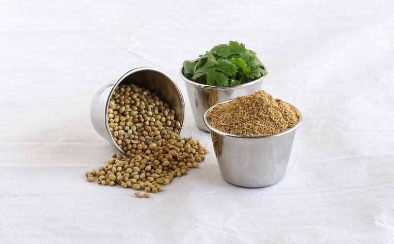 Coriander Powder with Coriander Seeds and Leaves in Steel Bowls royalty free stock photos