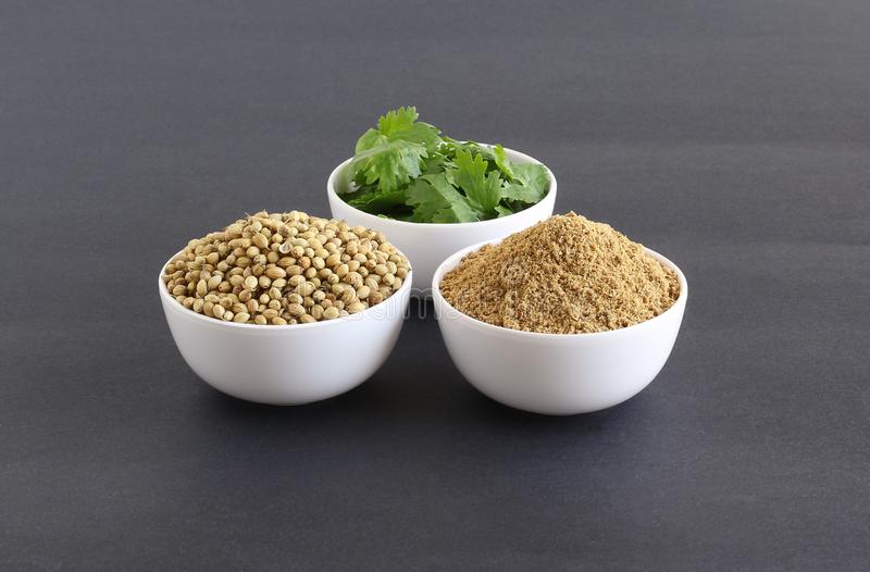 Coriander Powder with Coriander Seeds and Leaves stock photography