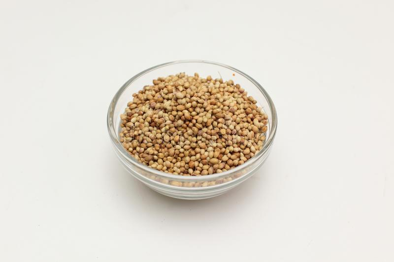 Download Coriander seed stock image. Image of spicy, pattern, dried - 25147373
