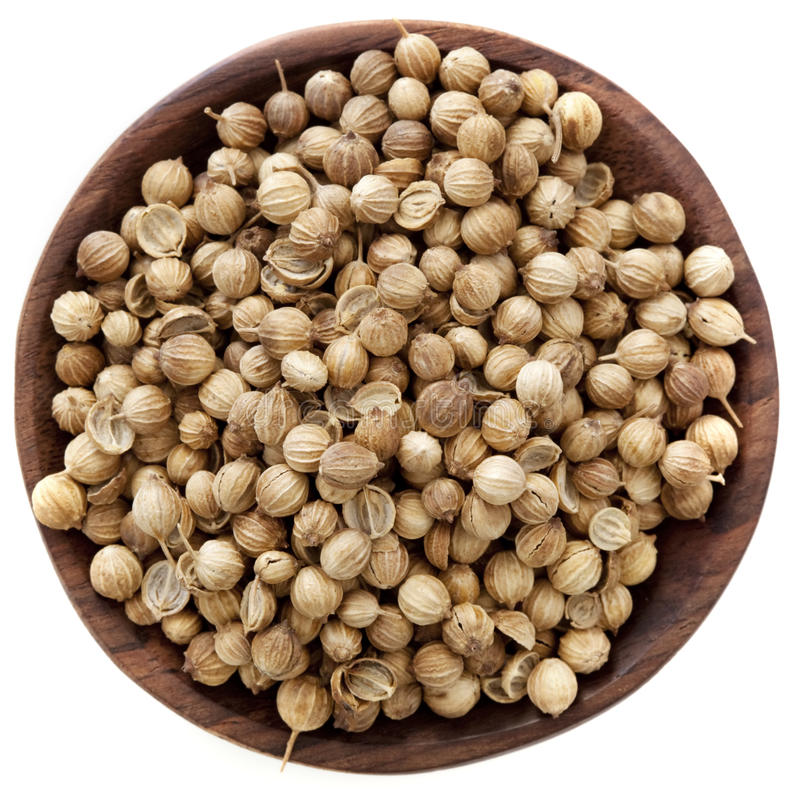 Download Coriander Seeds stock photo. Image of wooden, photograph - 21356108