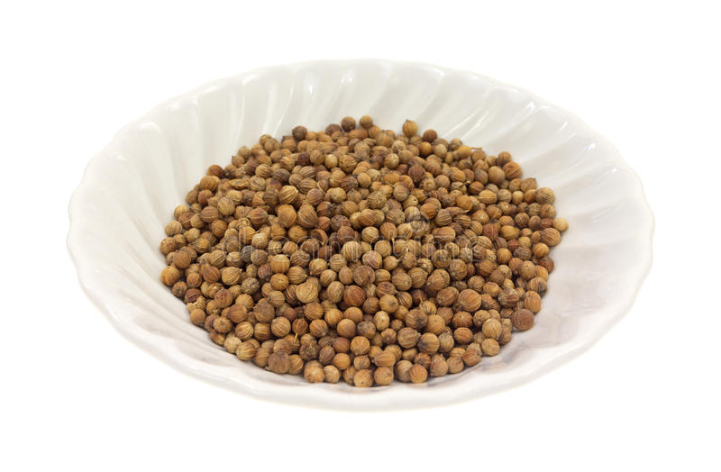 Coriander Seeds In White Dish Side View royalty free stock photos