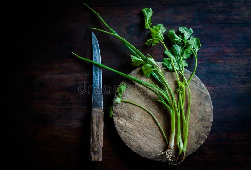 Coriandolo verde su vecchio legno fotografia stock libera da diritti