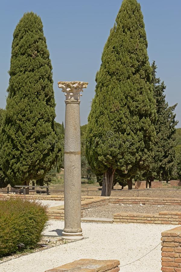 Corinthian roman column in the Ruins of Italica, Roman city in the province of Hispania Baetica. Corinthian roman column in the archeological excavation of the stock photos