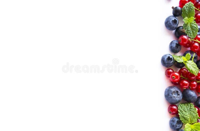 Corintos maduros dos mirtilos, das amoras-pretas, das morangos, os vermelhos e os pretos no fundo branco Misture bagas e frutos n imagem de stock