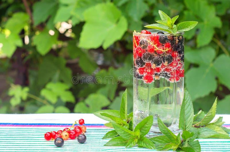 Corintos vermelhos e pretos em um vidro da água fotografia de stock