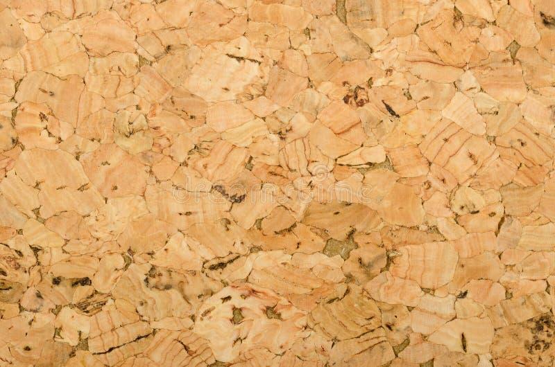 Cork поверхность с грубой текстурой, фото листа макроса стоковая фотография