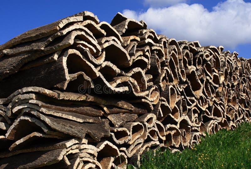 Cork bark 3 royalty free stock photos