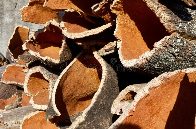 Cork bark stock photo