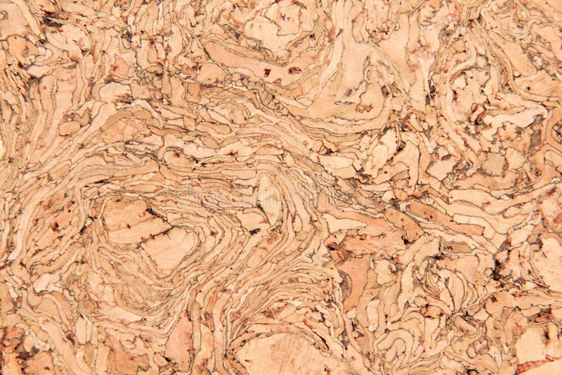 Cork blank background. Cork blank empty space wood background stock photo
