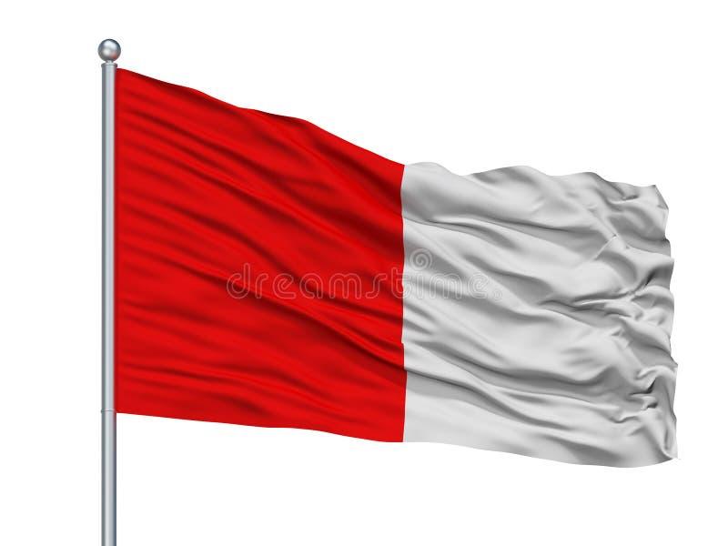 Cork City Flag On Flagpole, Irlande, d'isolement sur le fond blanc illustration libre de droits