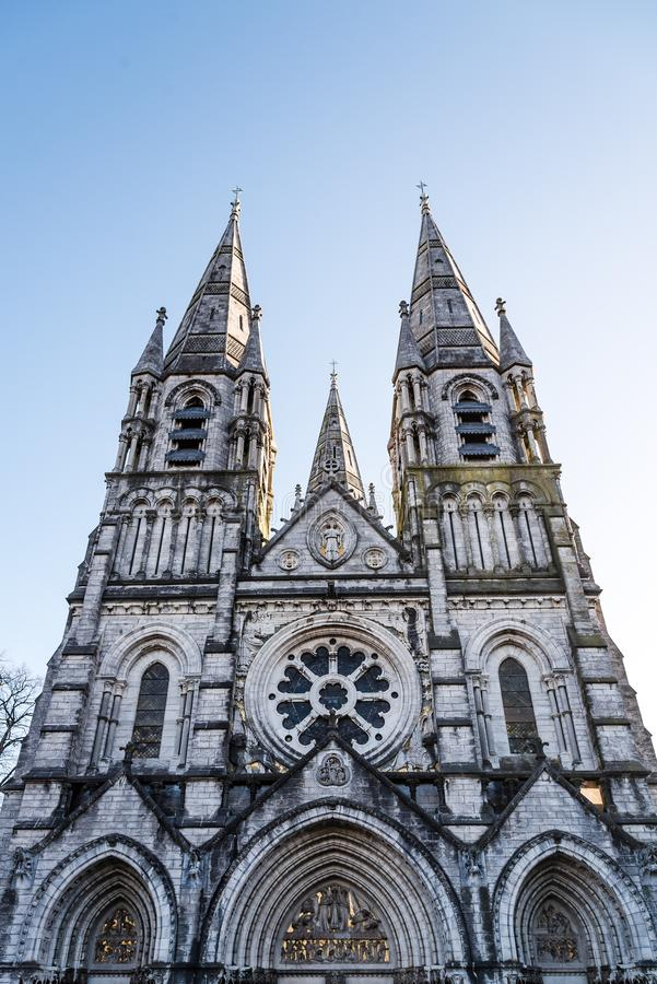 Cathedral of Saint Fin Barre in Cork stock photo
