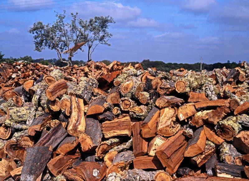 Cork oak bark, Portugal. Cork Oak bark piled up ready to be turned into bottle corks, Alentejo Region, Portugal, Western Europe royalty free stock image