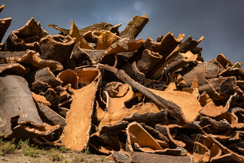 Cork Pile stock afbeelding