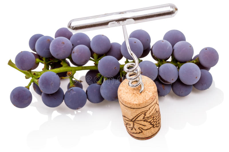Corkscrew and grape royalty free stock photography
