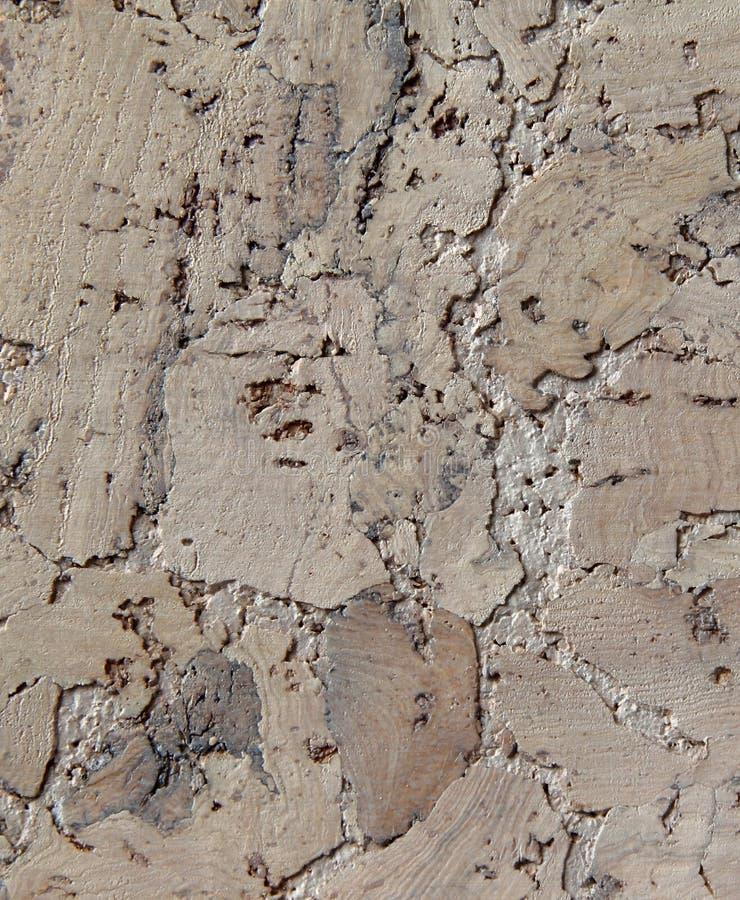 Corkwood Background Royalty Free Stock Image